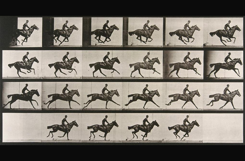 Muybridge-galop-1887
